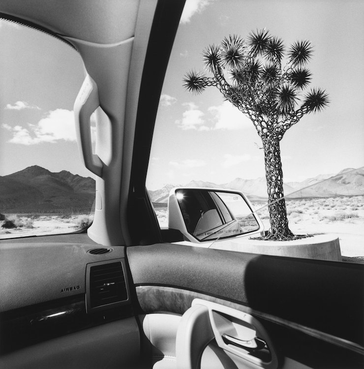 Lee Friedlander, California, 2008